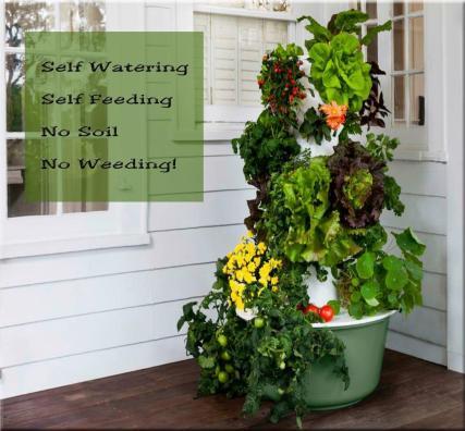 Garden-self-feeding